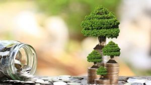 Green Bonds Standout in Pandemic Fixed Income Volatility