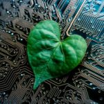An Influx of Stimulus Cash Could Turn Green Tech Into a Nightmare