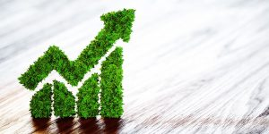PR or Pivot? Investors Snap Up Green-Bond Offerings From Gulf