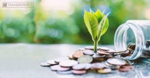 ESG . . . Meet Finance: Green Bonds And Sustainable Finance