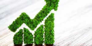 Sustainability-linked bonds are 'more powerful than green bonds'