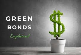 Green bonds gaining appeal, but for how long?