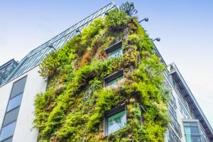 Evidence of 'greenium' grows as demand for green bonds outstrips supply