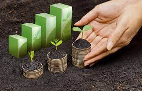 Are green investments a good option for consumers?