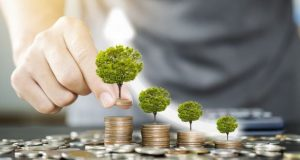 Central Bank to participate in green bond investment