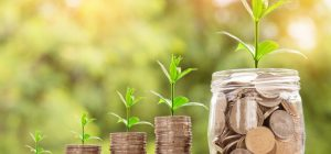 New independent advisory group to drive green investment and tackle 'greenwashing'