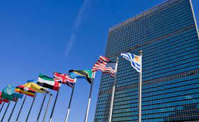 United Nations Staff Pension Fund Sets 2050 Net Zero Target