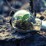 As Global ESG Nears High Greenwashing Is 'Major Concern'